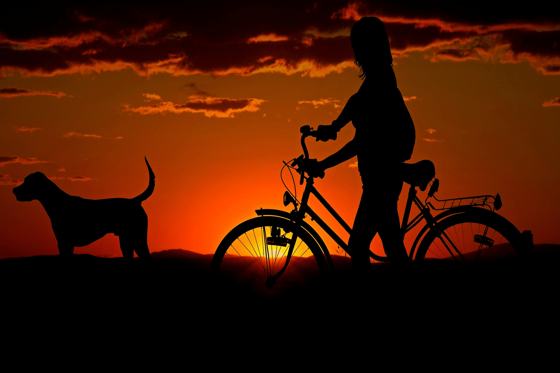 sykkelkjedet